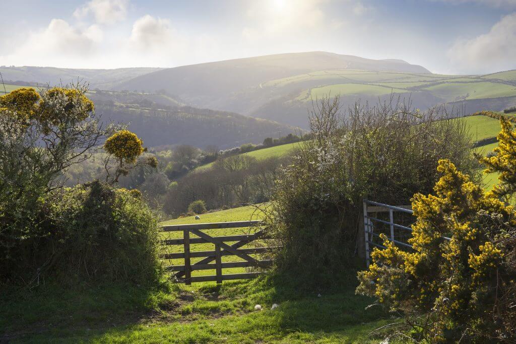 the rolling hills of Devon