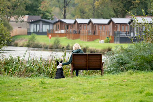Dog and owner sat by bench looking out over lodges at Lakeview Manor