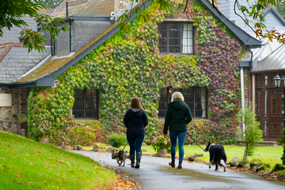 Two people walking dogs along the drive up to Lakeview Manor